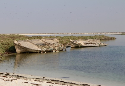 Abandoned dhows...
