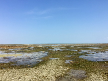 Low tide on the Eastern side of Barr Al hitman, reefs exposed for miles ...