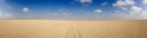 Sand and Sky ...