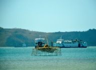 Fishfarm and ferries...