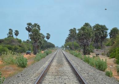 Railway to Talaimannar...