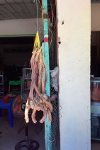 Dried root but it was special, hanging on its own, no way of knowing...no-one spoke English....