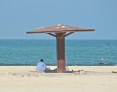 Hilf beach, Masirah, February 2015...