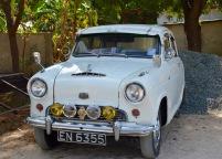 Perfect antique car in the jungle....
