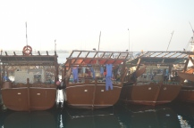 Dhow village life in Hilf port...