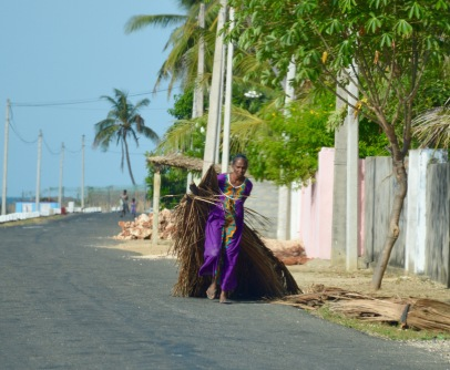Woman carrying palm leaves, on the road to Point Pedro...