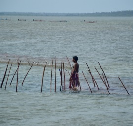 Lagoon fisherman...