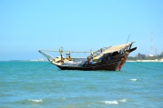 Dhow at anchor, off Hilf, February 2015...