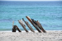 What's left of the Masirah shipwreck, December 2015...