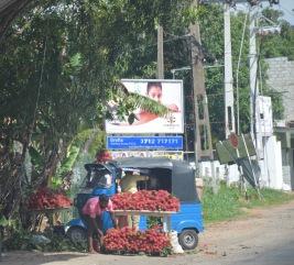 Tuk Tuk Rambutan stall...