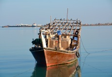Dhow in port, December 2015...