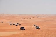 A Desert horde....
