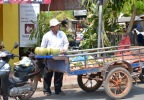 Coconut selling on the road-side