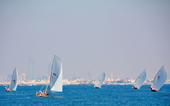 Graceful dhows...