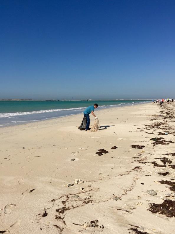 A long beach to clean...