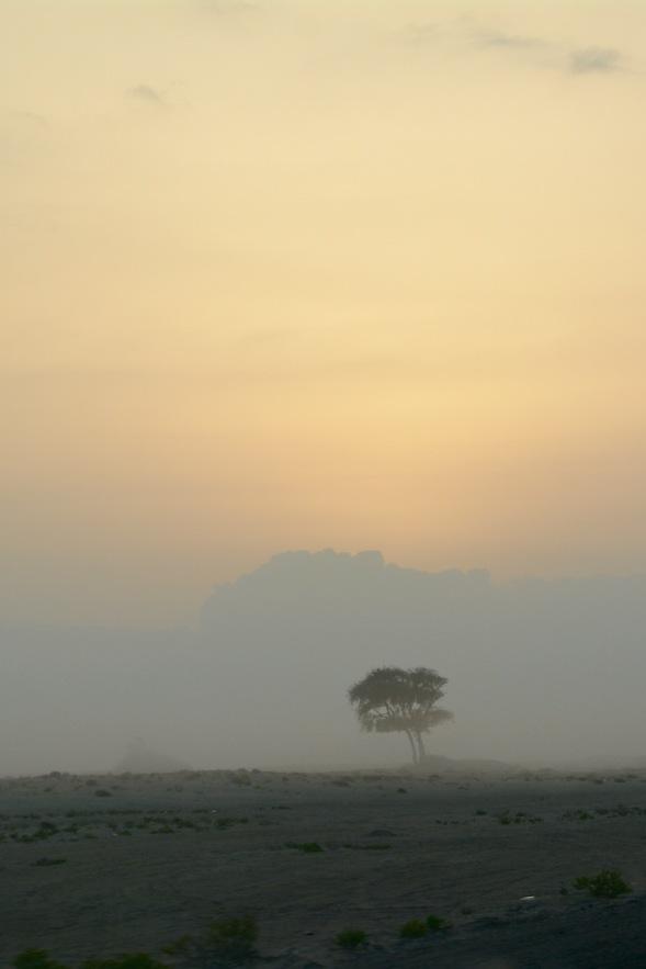 3-Before sunrise Ash Sharquiyah, Oman...