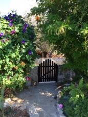 Come into my garden...