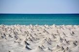 Crab pyramids at Sur Masirah beach...