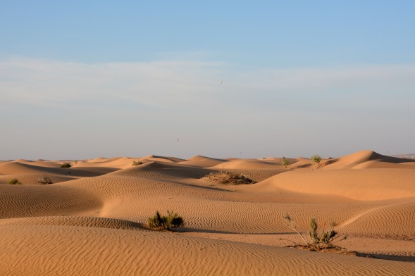 Out in the desert, not far from Dubai...