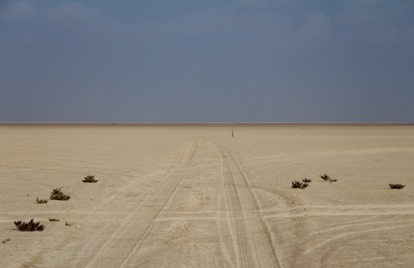 Extremely flat, Sabkha (salt) flats at Bar Al Hikmann, Oman...