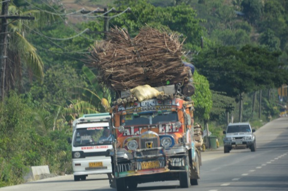 Palm fronds on the ubitiquous jeepney.... interesting window too...not much line of sight....