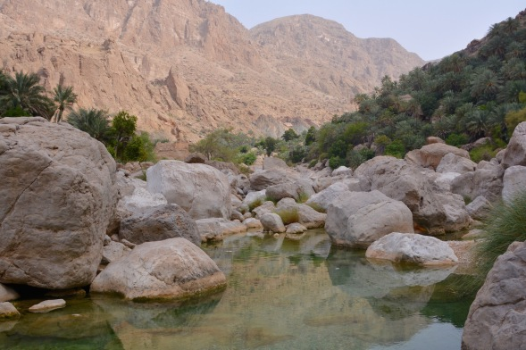 Still, clear water and reflections in the wadi.....