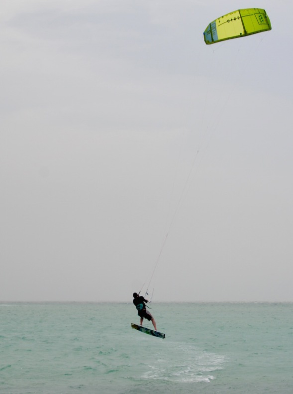 Flying high on the sea....