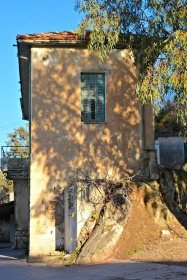 Sun-speckled window on a classic old village house...
