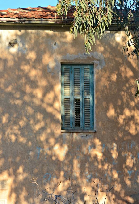 Shadows on the window wall...