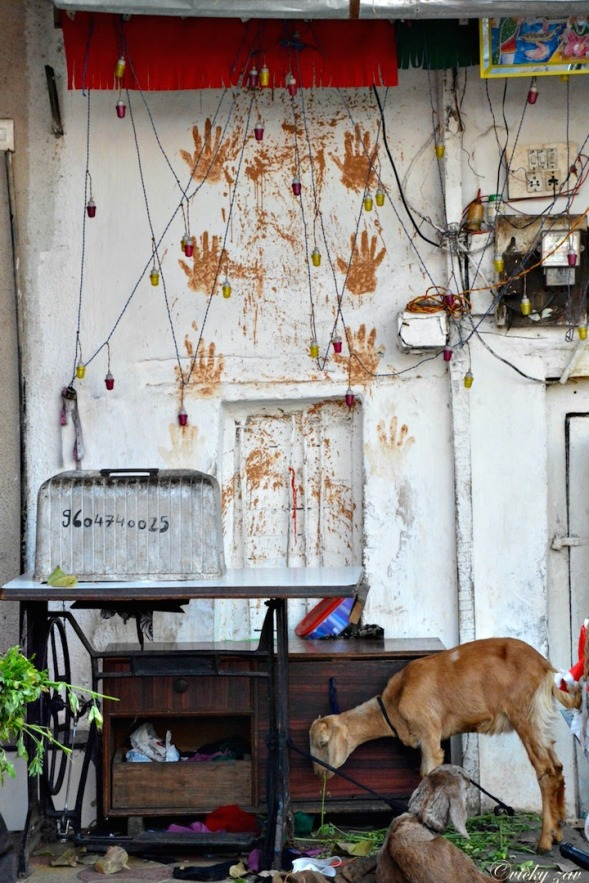 Henna hand prints for luck around the abandoned doorway....
