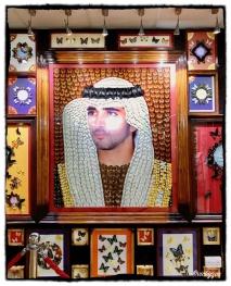 ZIMG_9809 In-Frame SheikhS