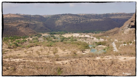 But focusing on the water, you can see the vivid blue and greenery around the edge of the wadi...